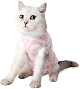 Professional Recovery Surgical Suits For Cats Pets Clothing