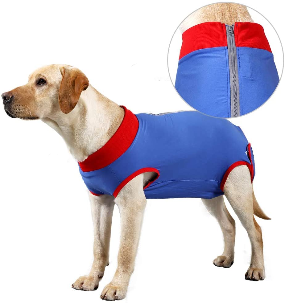 Fashion XXL Dog Recovery Suit Surgical